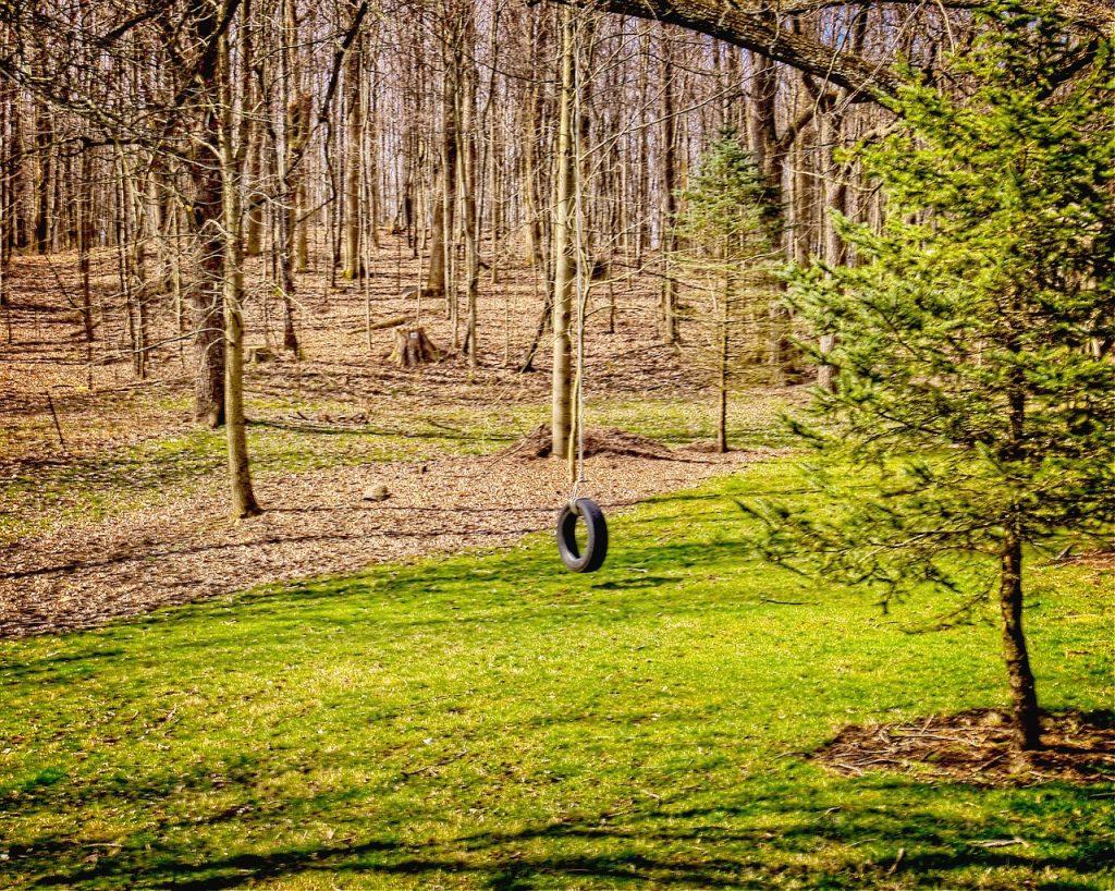 tire, tire swing, scenery